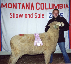 Langhus Sheep - Big Timber, Montana